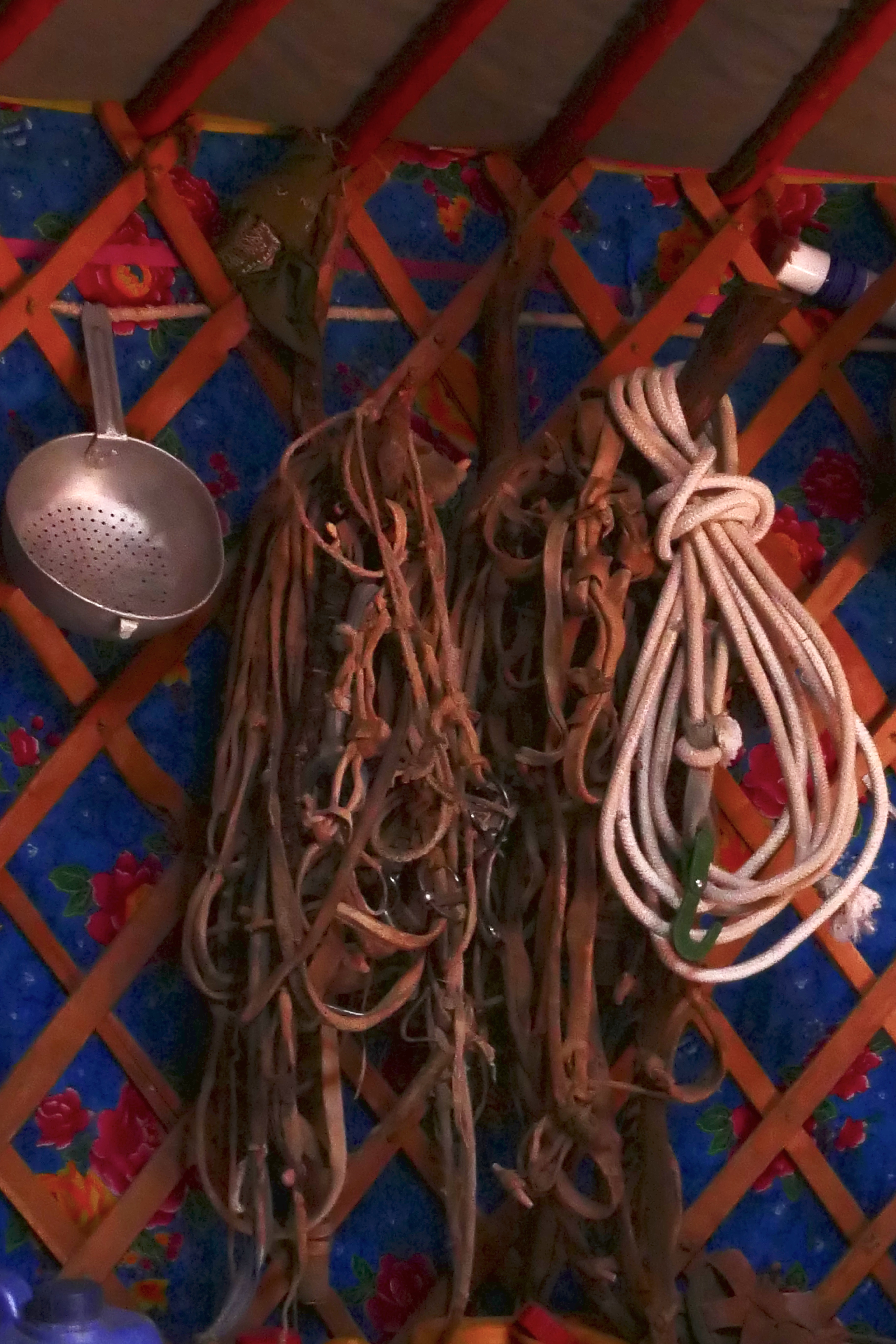 Mongolia: storing harnesses in the ger